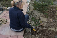 Senior in gardening
