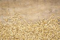 oat groats background