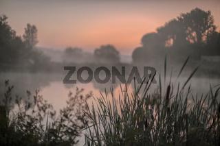 Morgennebel am Teich