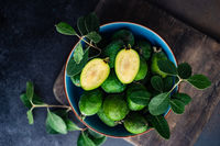 Autumnal organic fruit feijoa
