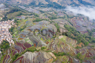 aerial view of terraced fields in valley