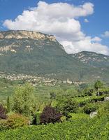 View to Village of Kaltern an der Weinstrasse,Trentino,South Tirol,Italy