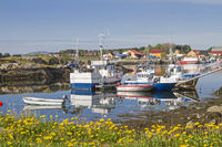 Port of Lauvoyvagen