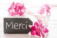Hydrangea Blossom, Merci Means Thank You