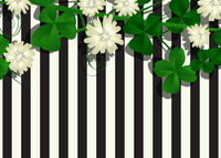 Clover leaves and flowers background
