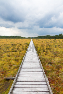 Nature trail to a wooden footbridge across a moor