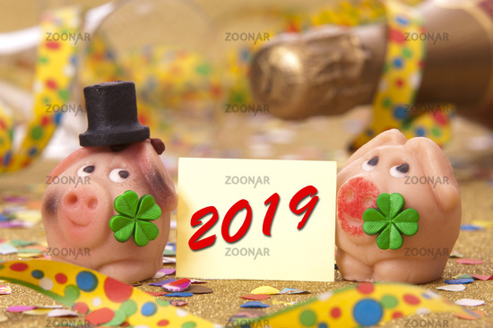 lucky pig with cork stopper of champagne and new year`s date 2019