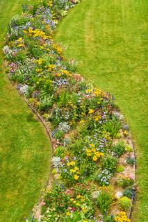 Viele bunte Blumen auf grüner Wiese im Sommer