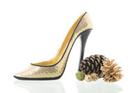 High heel shoe for Christmas party