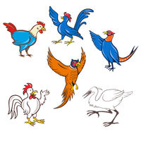 Fowl Cartoon Set