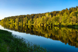 Beautiful river with a forest, the reflection of trees in the water, smooth calm surface of the water without waves.