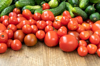 Close-up of organic tomatoes and cucumbers