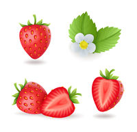 Realistic sweet strawberry set with leaves and flowers, fresh red berries, isolated on white background vector illustration.