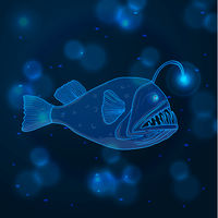 Hand drawn sketch Angler Fish, marine animals