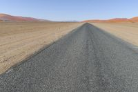 Straight road in the Namib desert to the horizon, Namibia, Africa.