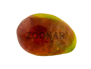 large ripe mango fruit red with green sideways on a white background