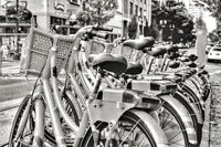 Rental bicycles on a busy urban street
