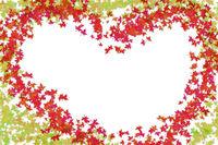 Frame heart green red leaves maple autumn design