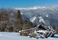 Winter snowy Carpathian mountains and old ruined wooden shed, Ukraine