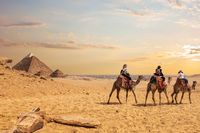 European tourists riding camels near the Pyramids of Egypt