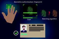 Vector infographics - fingerprint recognition, modern people authentication technology