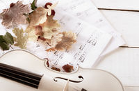 Close view of a white violin dry oak leaves and musical notes on wooden table