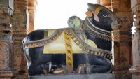 Nandi in at Sangmeshwar temple, Saswad, Pune