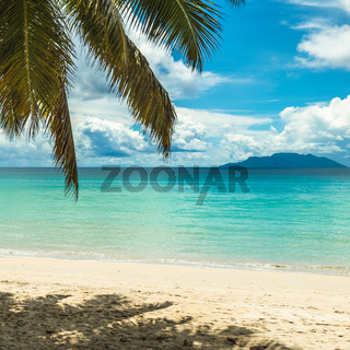 Tropical island beach. Perfect vacation background.