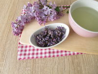 Lilac tea with dried lilac flowers