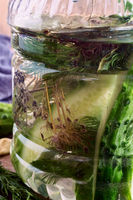 Pickles in a glass jar with cucumber brine