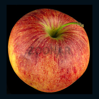 Apfel der Sorte Elstar freigestellt; apple of the sort Elstar