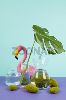 water monstera and flamingo