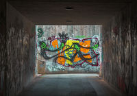 Graffiti im Tunnel L1007565.jpg