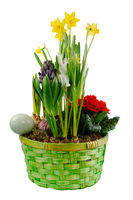 Isolated easter decoration with spring flowers