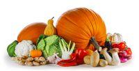 Group of harvest vegetables