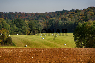 The crop in the fields is harvested