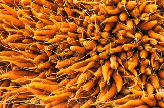 Background of fresh orange carrots