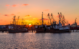 Beautiful, panoramic view on old fishing trawler on the Harbour of Romo (Rømø Havn) during sunset. In the Background old ships, pier and Trees. Denmark in the Summer.