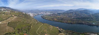 Panorama of vineyards in Douro Valley