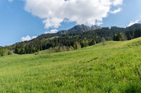 picturesque mountain landscape in the Swiss Alps on a beautiful summer day
