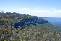 eucalyptus valley between rocky ranges at blue mountains