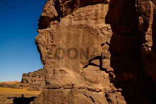 Cow - Cave paintings and petroglyphs at Boumediene ,Tassili nAjjer national park, Algeria