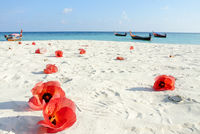 Blue sea, white sand and red Hibiscus flowers