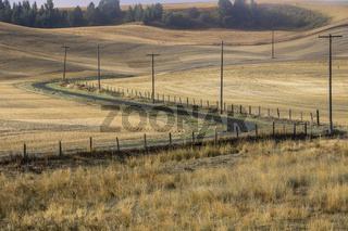 Winding country road in the palouse.