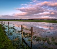 Sunset Reflections in a Flooded Pasture, Northern California, USA