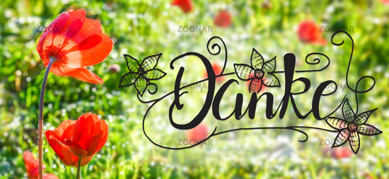 Poppy Flower, Spring, Calligraphy Danke Means Thank You