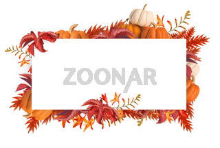 Abstract design of  autumn flowers and pumpkins frame halloween background isolated over white background