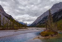 Mountain River in the Canadian Rocky Mountains, British Columbia