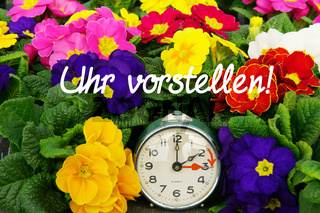 Zeitumstellung, Sommerzeit, Uhr, 31. März 2019, Frühlingsblumen, Schrift, Uhr vorstellen, Textraum,
