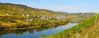 Moselle valley with Reil